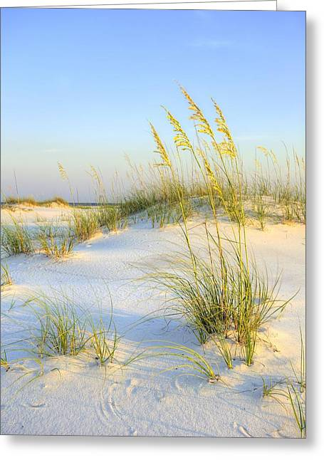 Panama City Beach Greeting Card by JC Findley