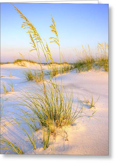 Panama City Beach Greeting Cards - Panama City Sands Greeting Card by JC Findley