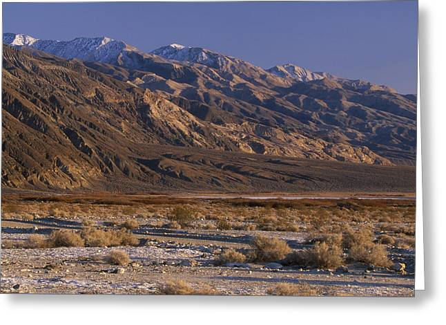 Panamint Valley And Range Greeting Card by Soli Deo Gloria Wilderness And Wildlife Photography