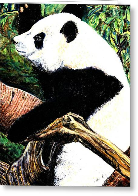 Bear Pastels Greeting Cards - Panda Bear Greeting Card by John Keaton