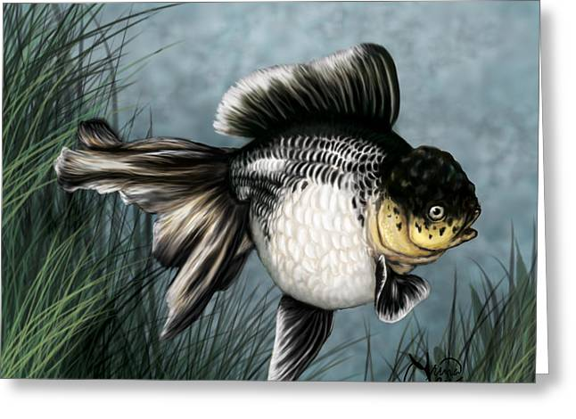 Oranda Greeting Cards - Panda Oranda Greeting Card by Trina  Boatman