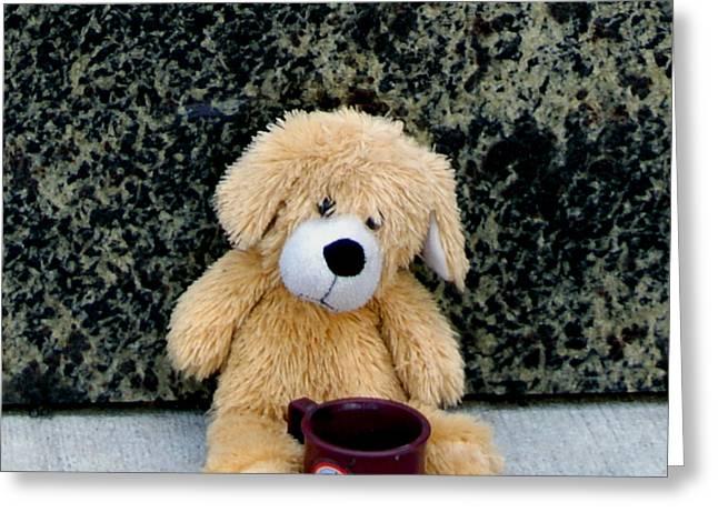 Panhandling Teddy Greeting Card by John Turner