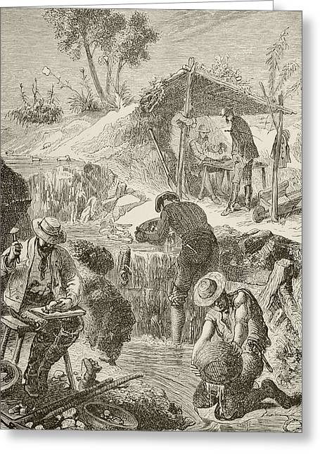 Californian Drawings Greeting Cards - Panning For Gold. From The Book Chips Greeting Card by Vintage Design Pics