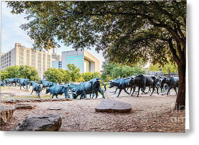 Panorama Of Cattle Drive At Pioneer Plaza In Downtown Dallas - North Texas Greeting Card by Silvio Ligutti