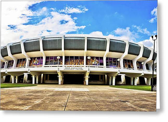 Fighting Tigers Greeting Cards - Panoramic P Mac Greeting Card by Scott Pellegrin