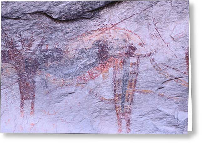 Panoramic View Of Petroglyphs Of Stick Greeting Card by Panoramic Images
