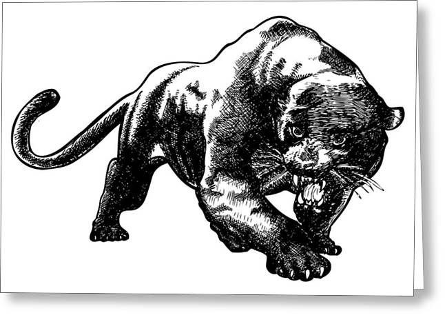 Panther Greeting Card by Karl Addison