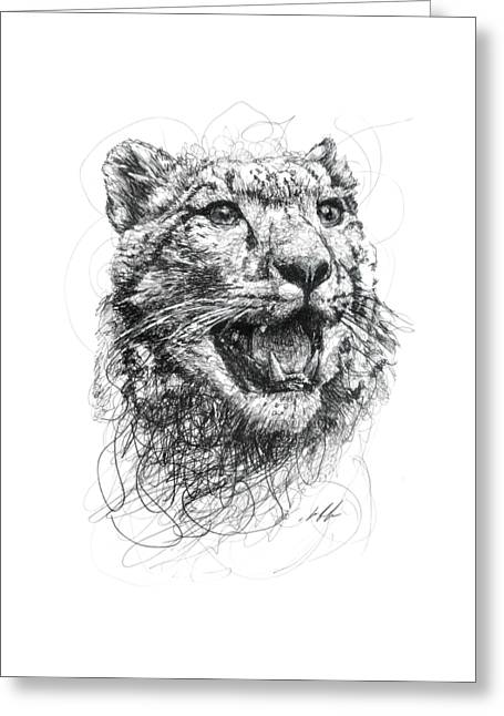 Zimbabwe Drawings Greeting Cards - Leopard Greeting Card by Michael  Volpicelli