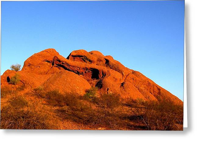 Scottsdale Artist Greeting Cards - Papago Park 2 Greeting Card by Michelle Dallocchio