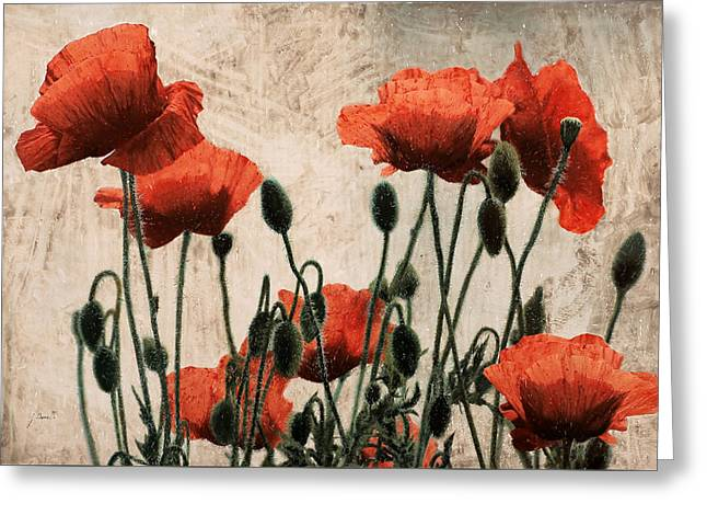 Reds Greeting Cards - Papaveri rossi Greeting Card by Guido Borelli