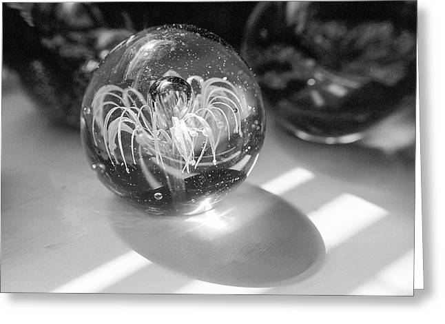 Paperweight And Morning Sun Greeting Card by Jon Woodhams