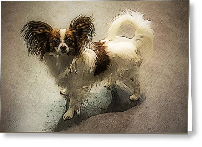 Toy Dogs Mixed Media Greeting Cards - Papillon Greeting Card by Alexey Bazhan