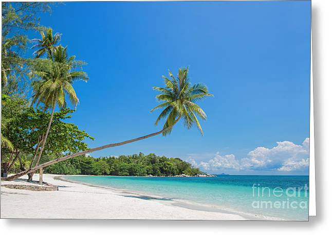 Paradise Beach Greeting Card by Delphimages Photo Creations