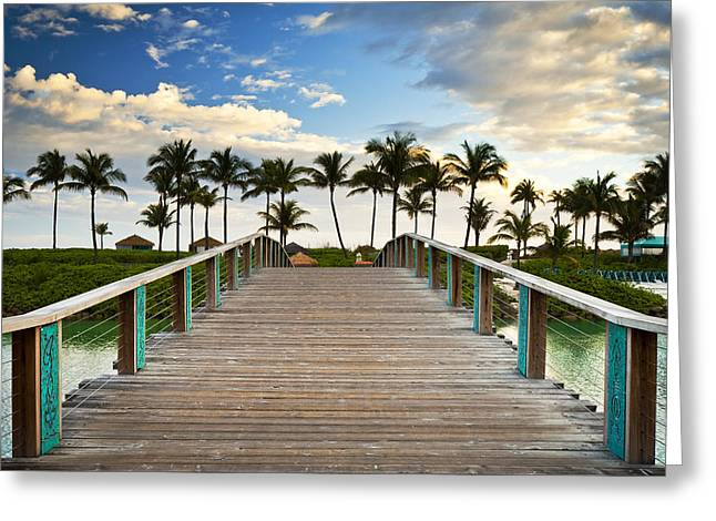 Lush Vegetation Greeting Cards - Paradise Beach Tropical Palm Trees Islands Summer Vacation Greeting Card by Dave Allen