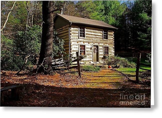 Log Cabins Greeting Cards - Paradise Greeting Card by E Robert Dee