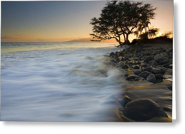 PAradise Gold Greeting Card by Mike  Dawson