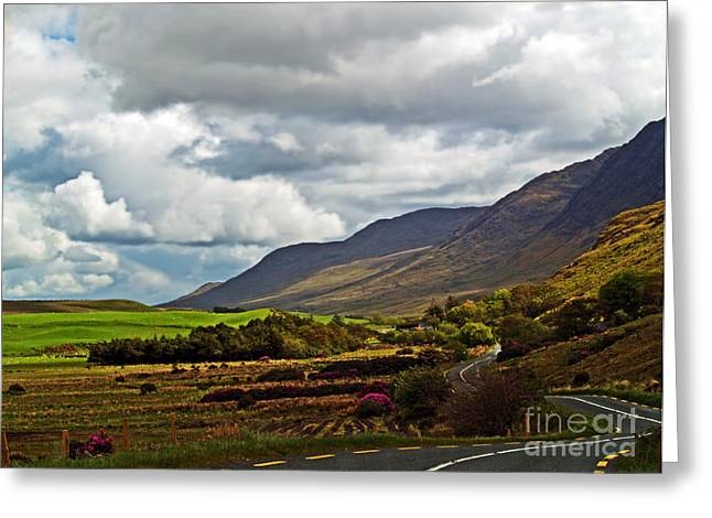 Paradise Road Greeting Cards - Paradise in Ireland Greeting Card by Patricia Griffin Brett