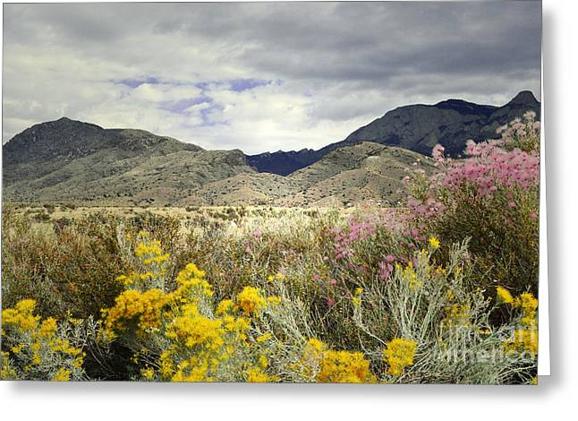 Storm Framed Prints Greeting Cards - Paradise Mountain Greeting Card by Andrea Hazel Ihlefeld