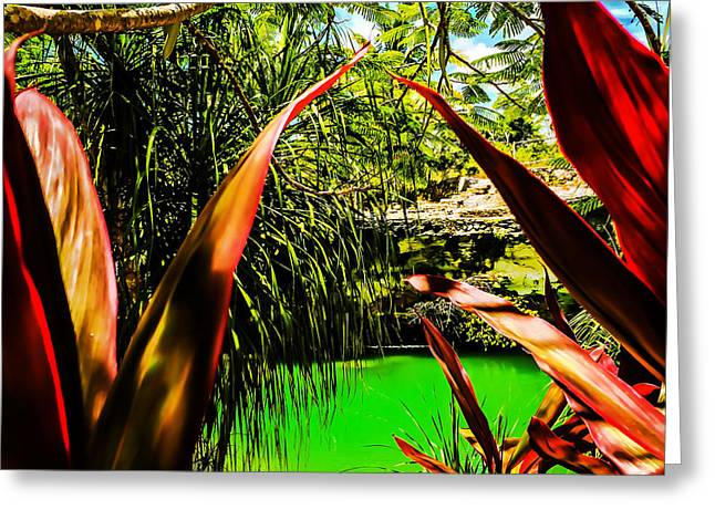 Photo Art Gallery Greeting Cards - Paraichio Greeting Card by Hugo Eloy TAO