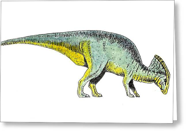 Parasaurolophus Greeting Card by Michael Vigliotti