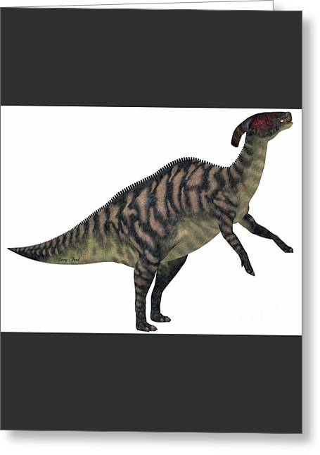 Parasaurolophus Striped On White Greeting Card by Corey Ford
