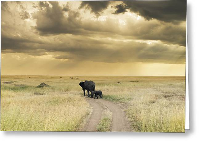 Large Format Animal Print Greeting Cards - Parental Guidance Greeting Card by Barry Aldridge