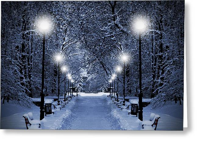 Snowy Night Night Greeting Cards - Park at Christmas Greeting Card by Jaroslaw Grudzinski