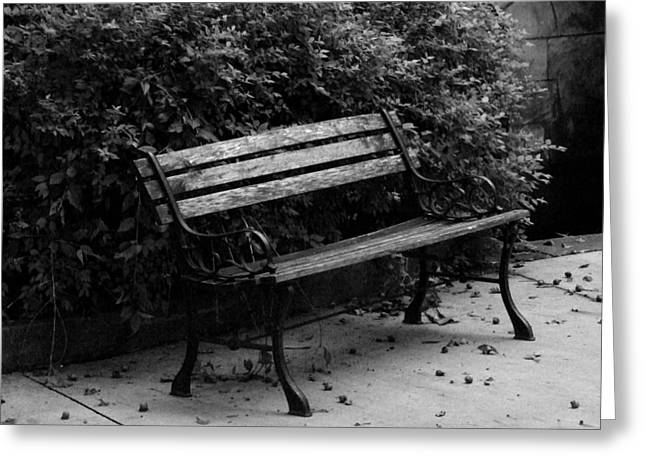 Park Benches Greeting Cards - Park Bench Greeting Card by Michael L Kimble