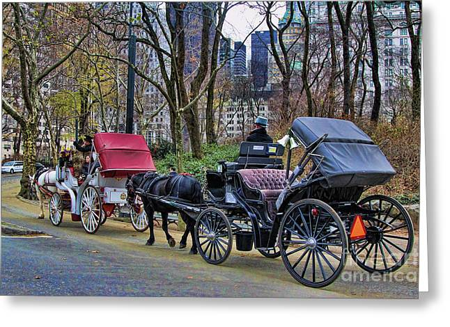 Chuck Kuhn Greeting Cards - Park Carriage  Greeting Card by Chuck Kuhn