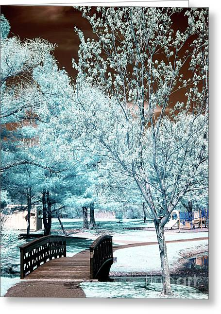 Pond In Park Greeting Cards - Park Walk in South River Greeting Card by John Rizzuto