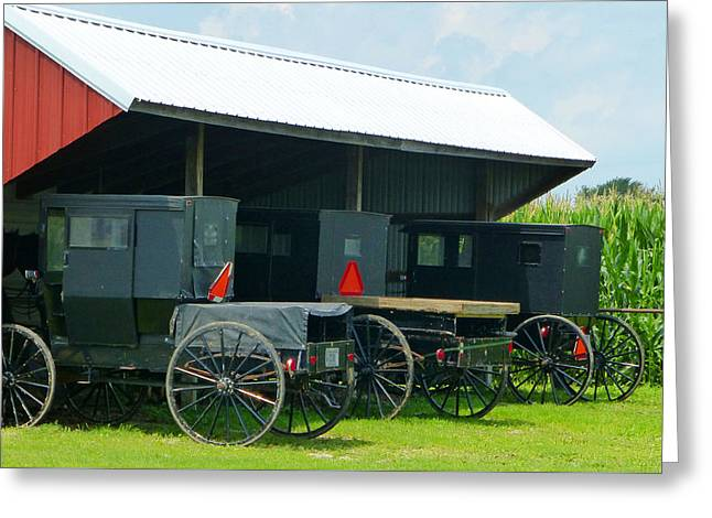 Amish Community Greeting Cards - Parked Buggies Greeting Card by Tina M Wenger