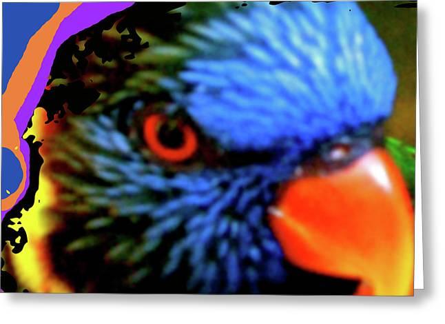 Flocks Of Birds Mixed Media Greeting Cards - Parrot Colors Greeting Card by Debra     Vatalaro