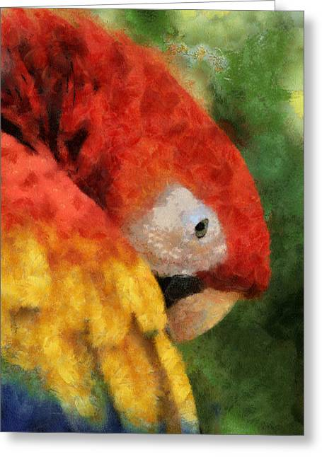 Parrot Greeting Card by Elaine Frink
