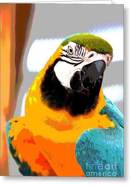 Parrot Pyrography Greeting Cards - Parrot Posing Greeting Card by Jack Ader