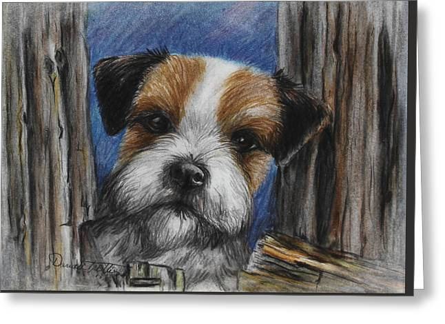 Puppies Drawings Greeting Cards - Parson Russel Terrier Greeting Card by Daniele Trottier