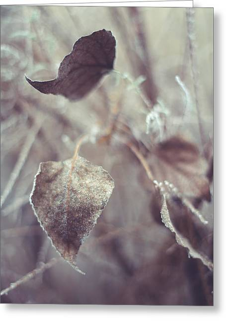 Part Of Translucent Reality. Vertical Greeting Card by Jenny Rainbow