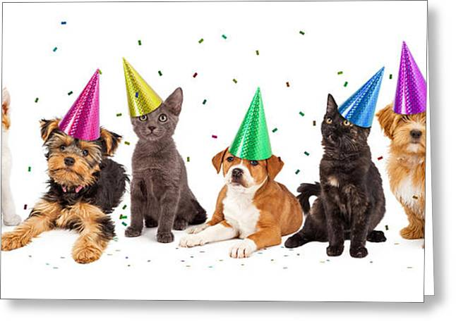 Occasion Photographs Greeting Cards - Party Puppies and Kittens With Confetti Greeting Card by Susan  Schmitz