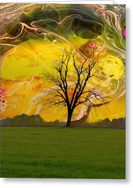 Party Skies Greeting Card by Jan Amiss Photography