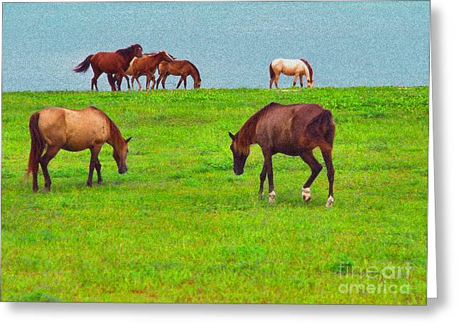 Sea Horse Greeting Cards - Paso Fino Horses Graze by Seaside Greeting Card by Thomas R Fletcher