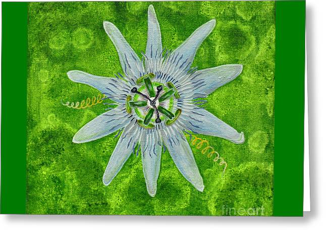 Passion Fruit Paintings Greeting Cards - Passiflora Passion Fruit Flower Greeting Card by Martina Carney