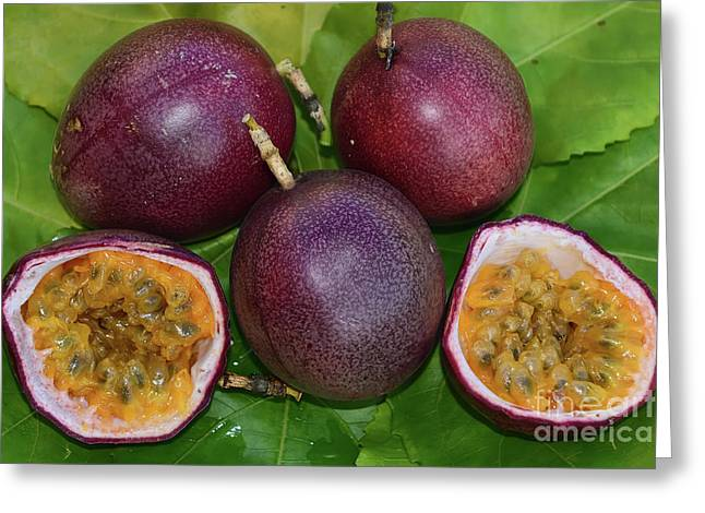 Passion Fruit Greeting Cards - Passion Fruit Harvest Greeting Card by Olga Hamilton