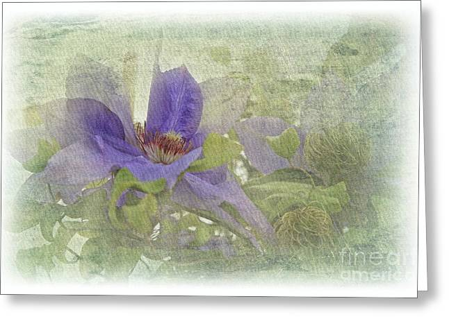Passionflower Greeting Card by Lali Kacharava