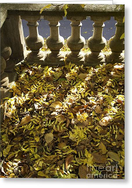 Fallen Leaf Greeting Cards - Past balustrade. Greeting Card by Bernard Jaubert