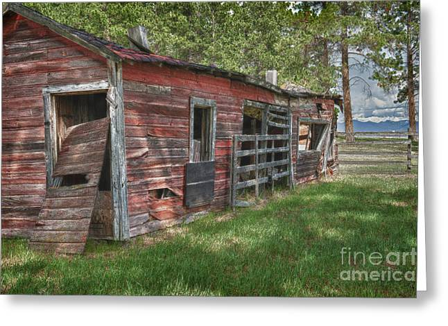 Rundown Barn Greeting Cards - Past My Time Greeting Card by Sandra Bronstein