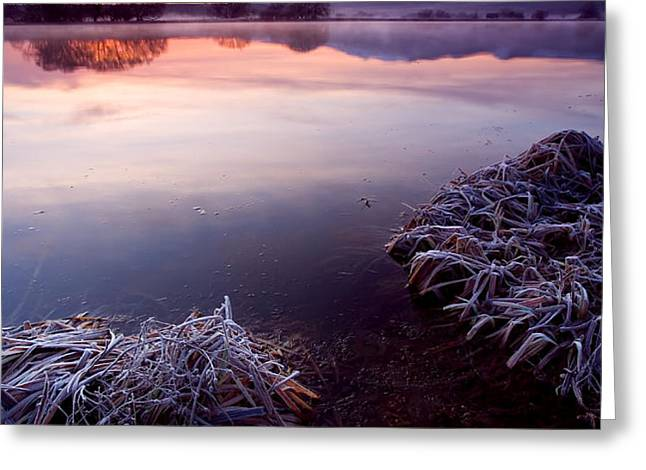 Pastel Dawn Greeting Card by Mike  Dawson