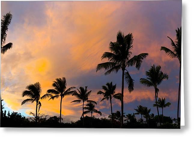 Pastel Palms Greeting Card by Sean Davey