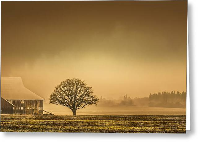 Fall Grass Greeting Cards - Pastoral Barn Greeting Card by Don Schwartz