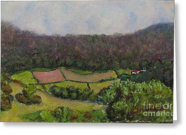 Border Pastels Greeting Cards - Pastoral Patches Greeting Card by Laurie Morgan