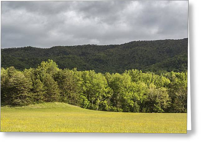 Pastural Grounds Greeting Card by Jon Glaser