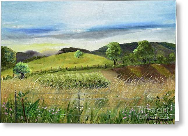 Grape Vineyard Greeting Cards - Pasture Love at Chateau Meichtry - Ellijay GA Greeting Card by Jan Dappen